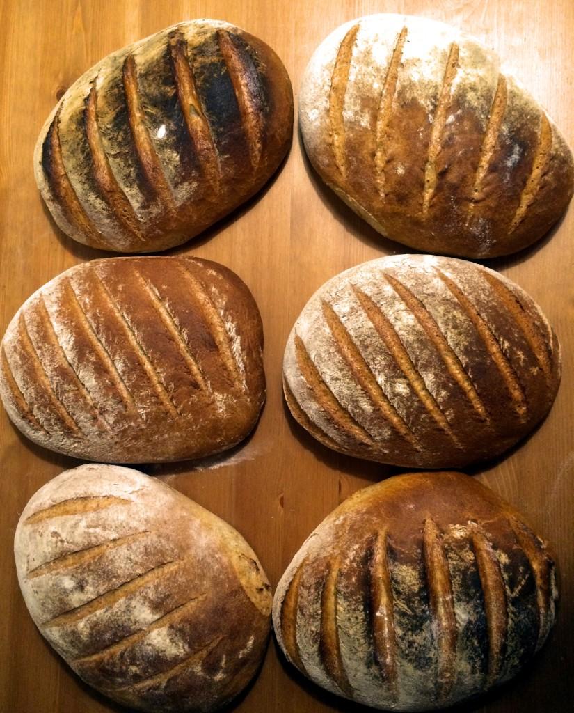 prosty-domowy-chrupiacy-chleb-homemade-bread-przepis-recipe