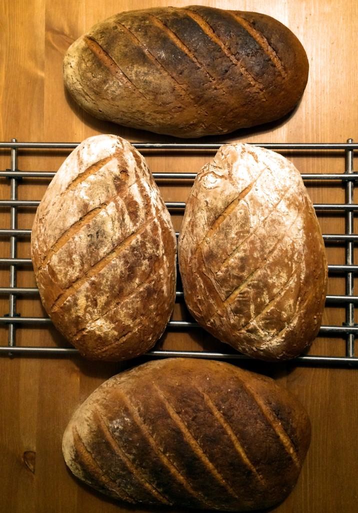 chlebek-pszenny-chrupiacy-homemade-bread-przepis-recipe